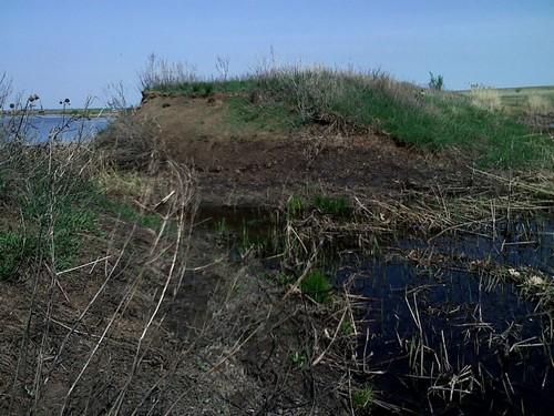 Пейзажи пруда