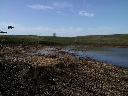 Весенняя ловля карася в степном пруду Самарской области