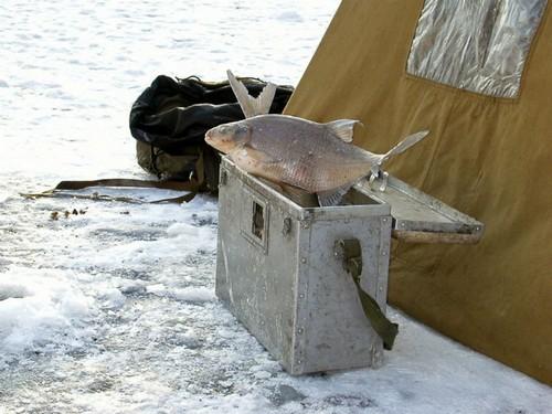 «Чемоданы», есть смысл поговорить с этим рыболовом