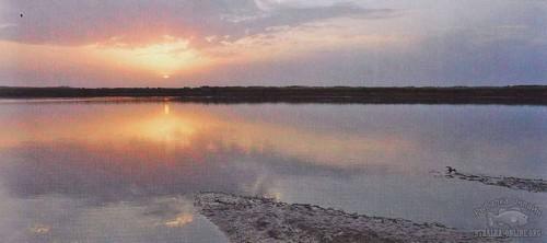 закат перед клёвом сомов