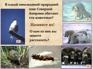 Обитание диких животных