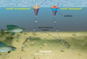 Особенности рыбалки в мелкой воде