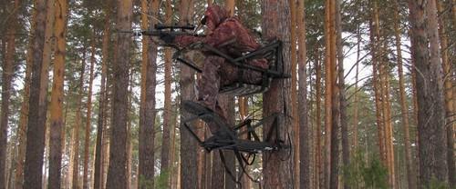 Охота на медведя на овсах с лабаза в специальной экипировке