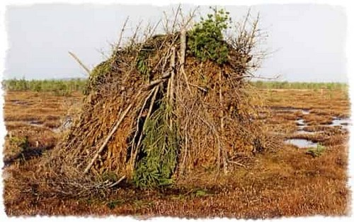 постройка шалаша для охоты на тетерева