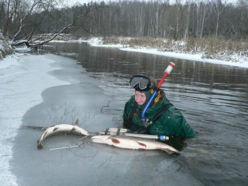 подводная охота зимой