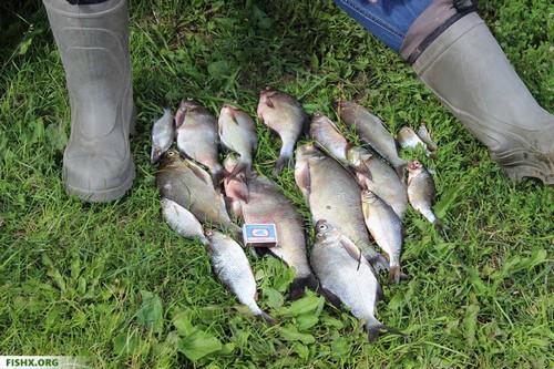 Сапоги для рыбалки