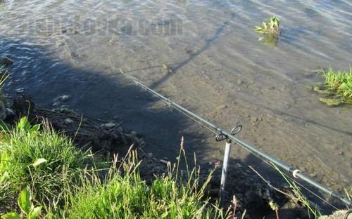 Выбор оптимальной длины поводка для ловли на фидер