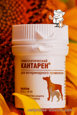 Таблетки кантарена