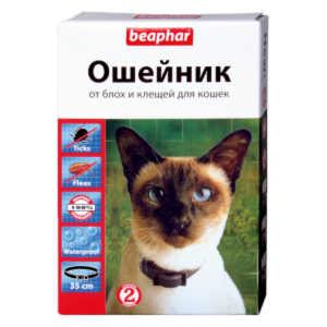 Ошейник
