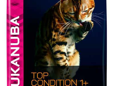 Корм для кошек Eukanuba и его основные характеристики