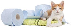 Какие есть слабительные препараты для кошек