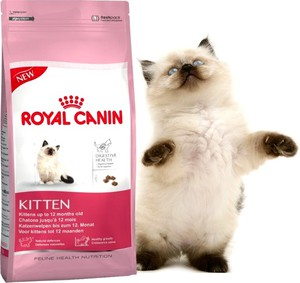 Корм Роял канин для котят