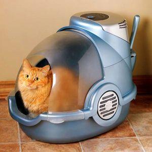 Виды закрытых туалетов для кошек