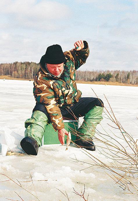 В поиске активной рыбы, Зимняя плотва водохранилищ
