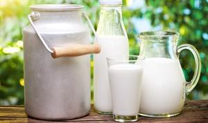 Молочность