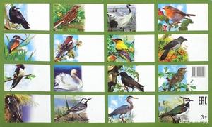 Список птиц на территории России