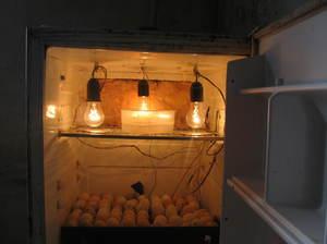 Элементы инкубатора