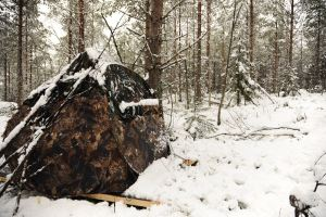 Skradok for hunting wood grouse in the spring