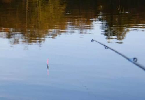 рыбалка на маховое удилище