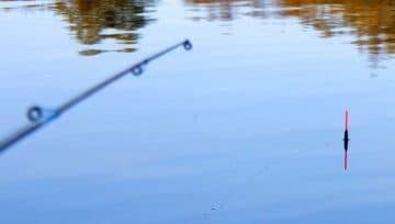 удилища для поплавочной ловли
