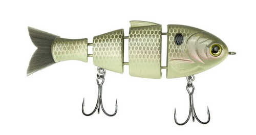 Найдите и поймайте Spring Bass