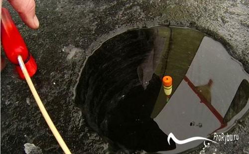 Зимняя рыбалка на плотву поплавочной удочкой