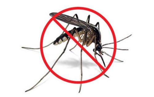 борьба с комарами средства