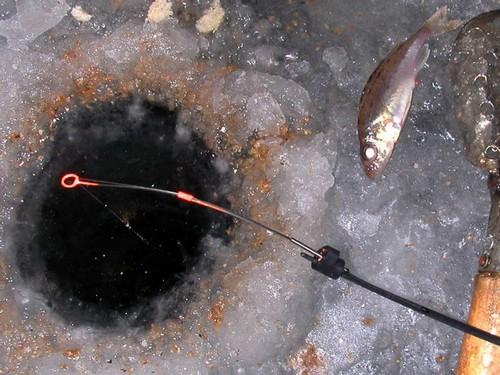 Подошел злейший друг рыбака-лещатника. Пора сменить место
