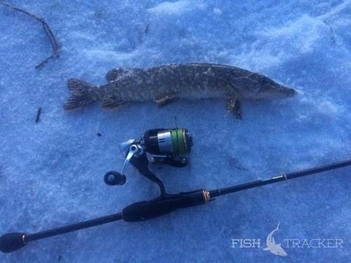 Долгожданная щучья рыбалка