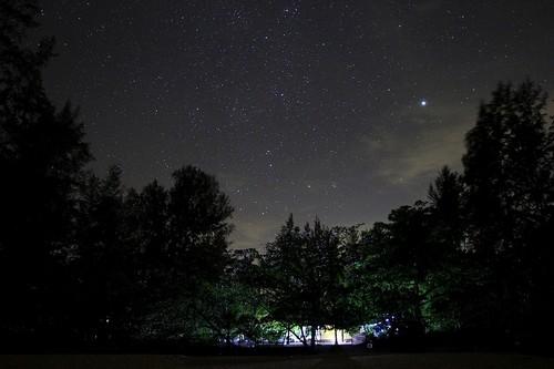 Ночное небо с россыпью звёзд и участком Млечного пути над деревьями у пляжа White Sands Beach в Khao Lak, Таиланд
