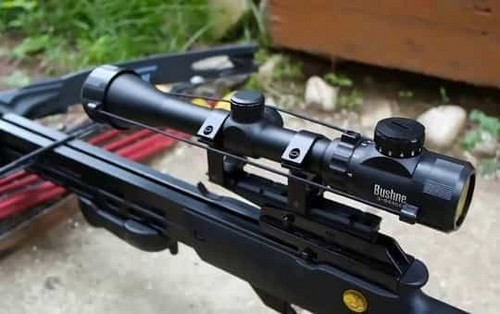 оптика для охоты с арбалетом