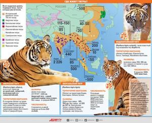 Места обитания тигров на Земле