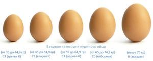 Куриные яйца разных категорий