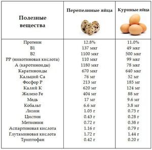 Пищевая ценность яиц и вес куриного яйца