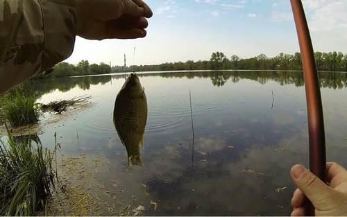 рыбалка на карася в октябре