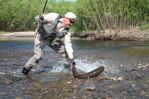рыбалка на тайменя в Монголии